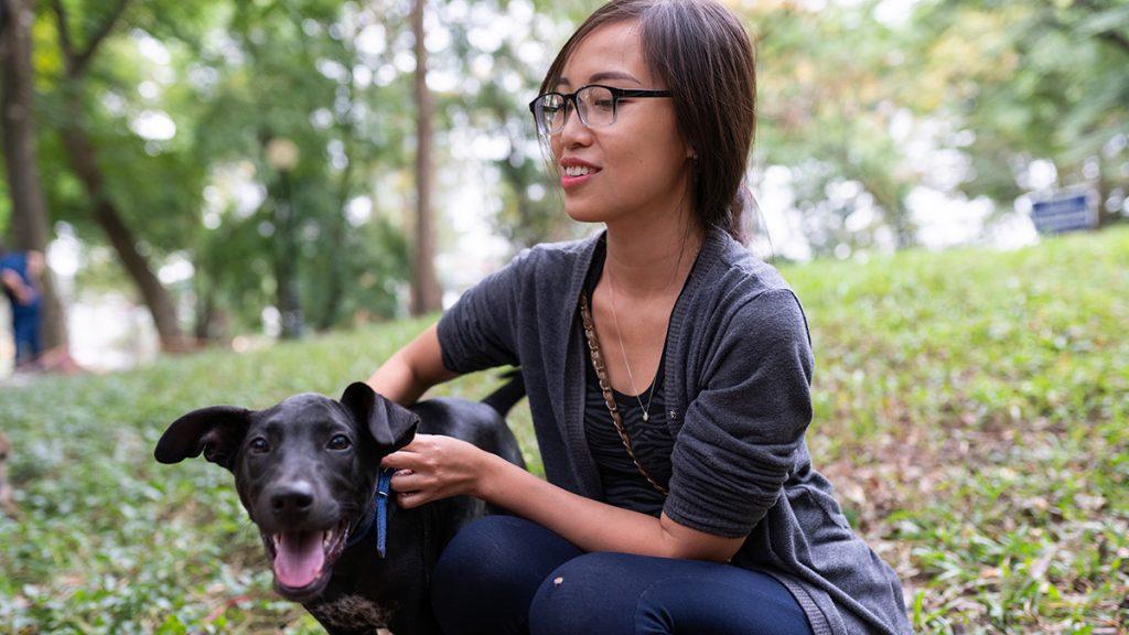 Hanoi Botanical Garden Dogs