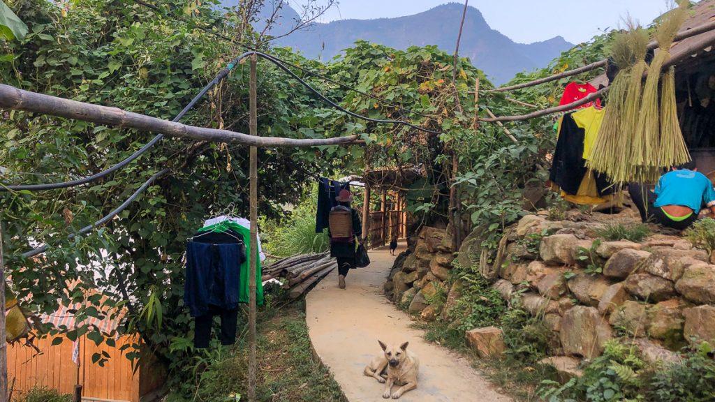 Sapa Sa Pa Hanoi Trip 17