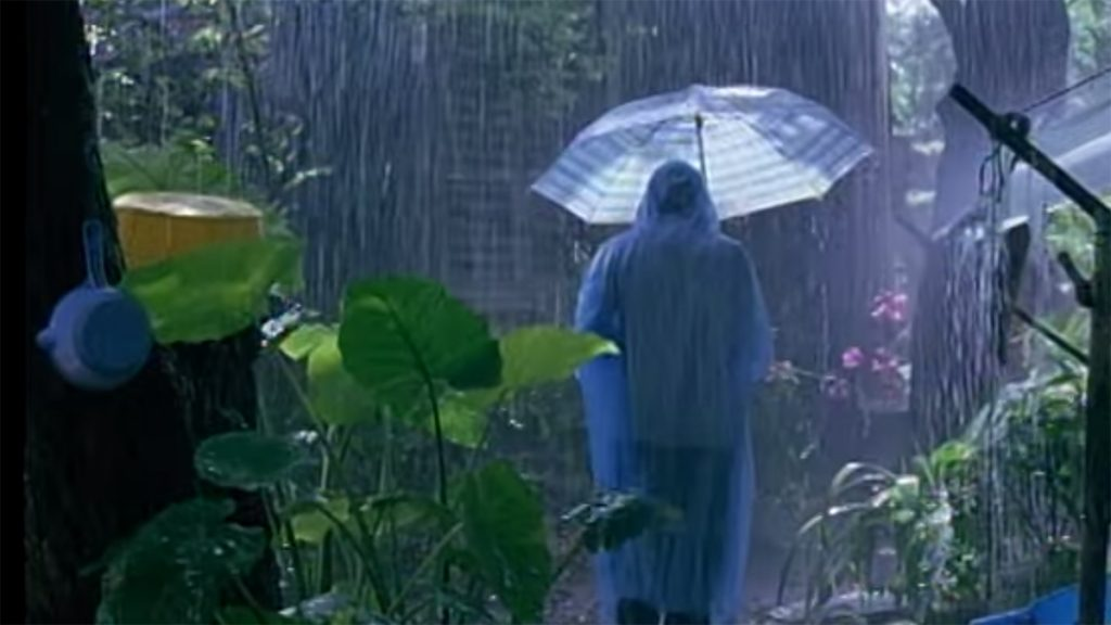 Rain In Hanoi