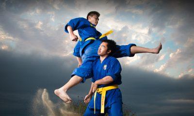 Vovinam Vietnam Martial Art