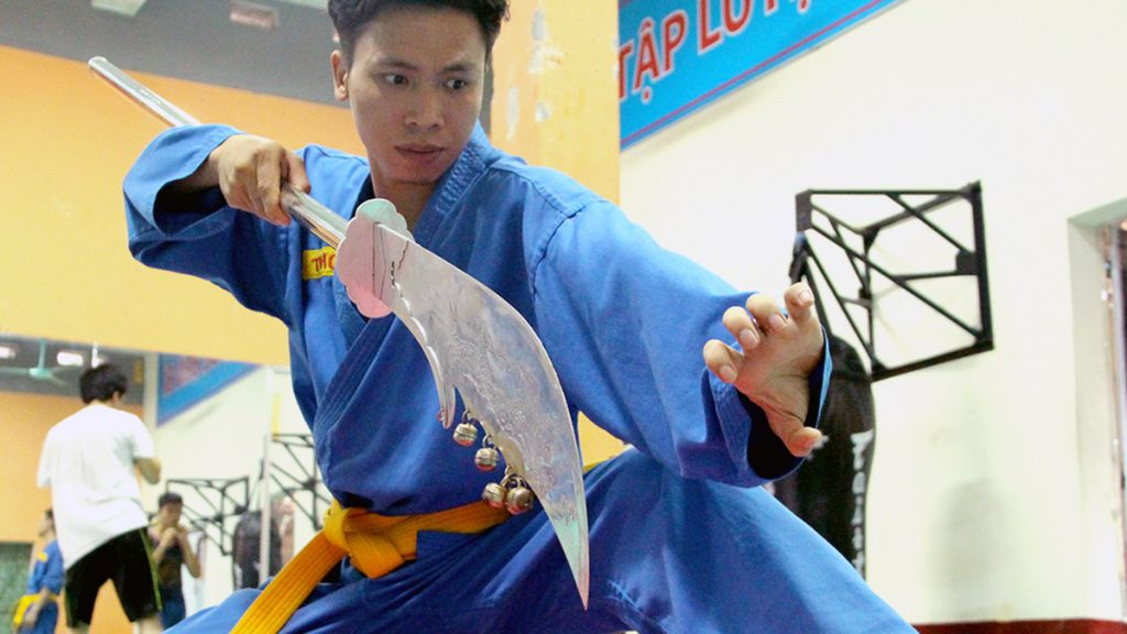Vovinam Martial Art Vietnam