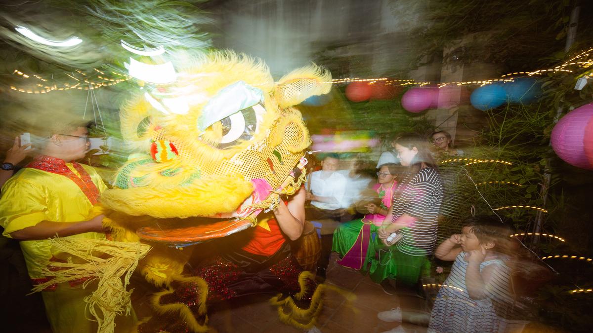 Ha Dragon Dancing Resized