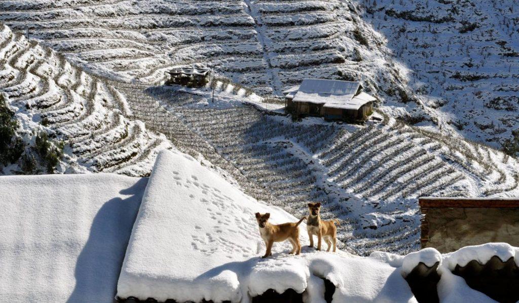 Sapa Winter Resiized